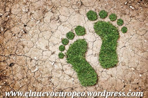 No os imagin is de d nde viene la palabra suelo for Significado de suelo